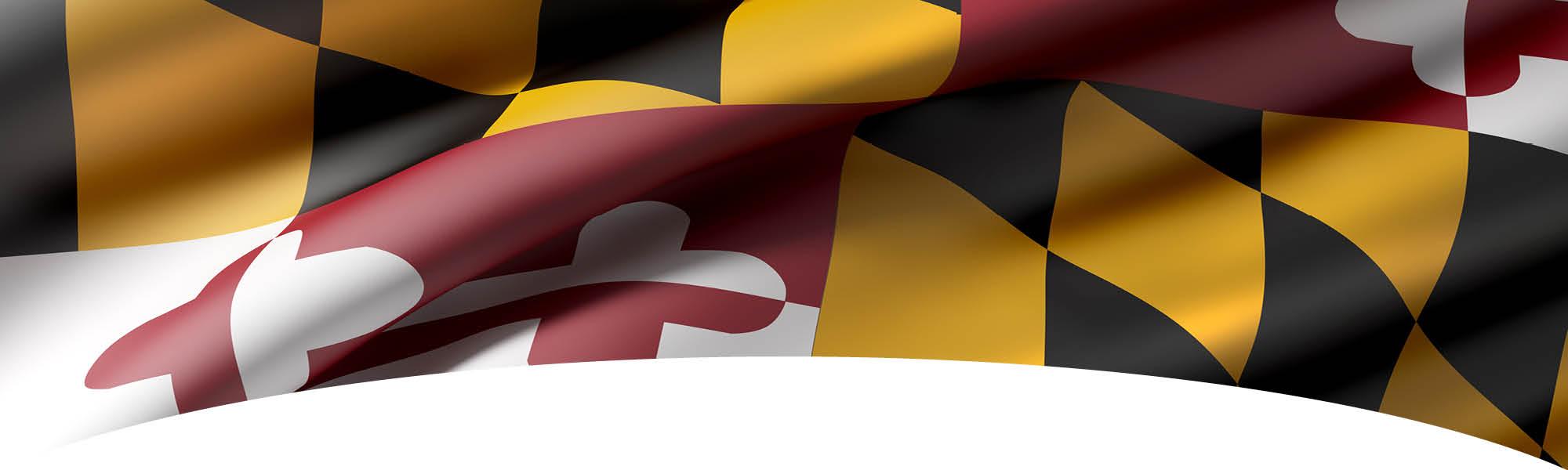 Maryland Community Fellows - Maryland State Flag